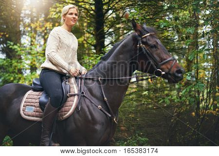 Lady Riding A Brown Horse In Park