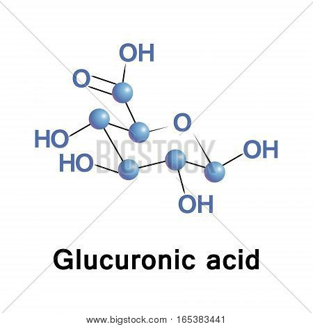 Glucuronic acid is a uronic acid that was first isolated from urine. It is found in many gums such as Gum arabic and Xanthan, and is important for the metabolism of microorganisms, plants and animals.