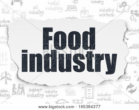 Industry concept: Painted black text Food Industry on Torn Paper background with  Hand Drawn Industry Icons