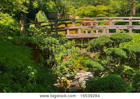 HDR image of Japanese Wood Bridge in garden of green and gold trees