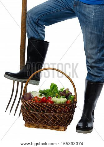 on a white background vegetables harvested in the basket using fork