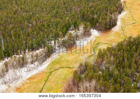 Top view of forest meadow after first snow has just fallen in late autumn.