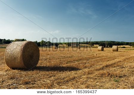 Beautiful landscape with straw bales in end of summer, Field in Girona, Spain
