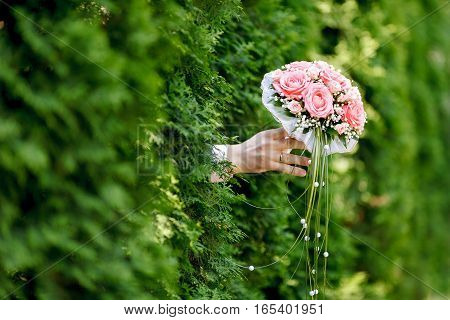 Wedding bouquet of pink roses in the groom's hand on a green background. Soft focus selective focus