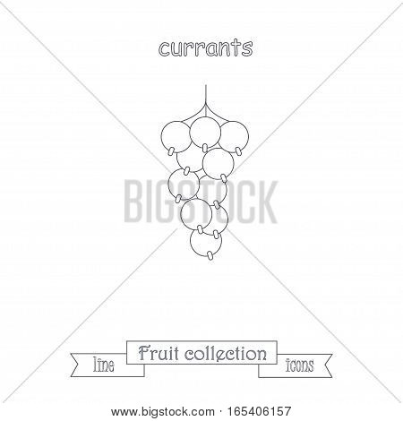 Line currants icon, fruit icon collection stock vector illustration