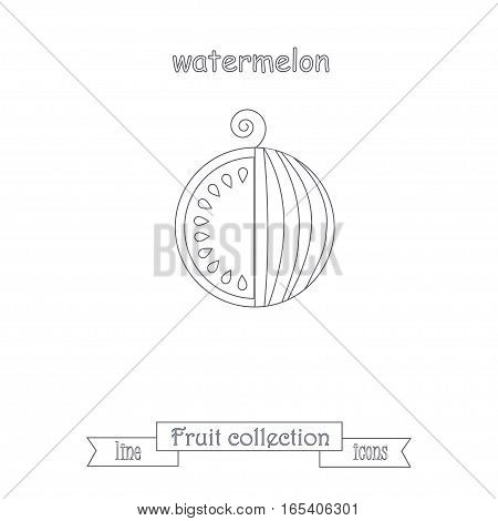 Line watermelon icon, fruit icon collection stock vector illustration