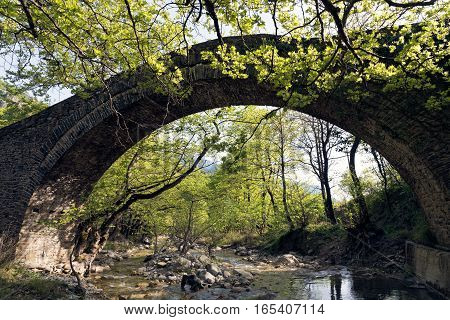 Old traditional stone bridge in Epirus, Greece
