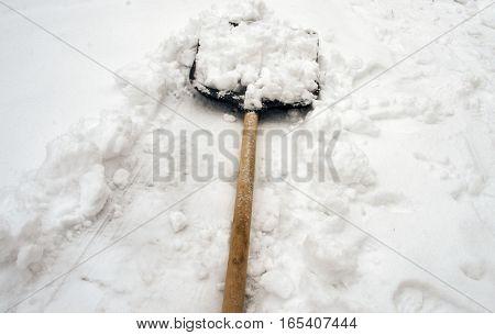 snow shovel removes fresh white snow in the winter