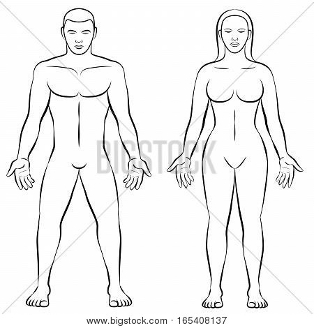 MAN and WOMAN - outline illustration for comparison of female and male body shapes.