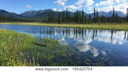 A wide stream flows timidy under the view of distant mountains in the Kenai National Wildlife Refuge.