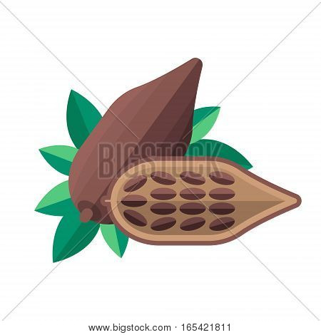 Cocoa Beans And Leaves Vector Illustration. Superfood Cacao Icon. Healthy Detox Natural Product. Fla