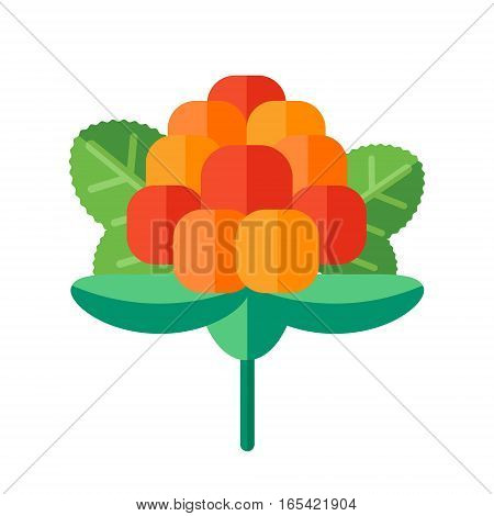 Cloudberry With Leaves Vector Illustration. Superfood Creeping Raspberry Icon With Yellow Orange Ber