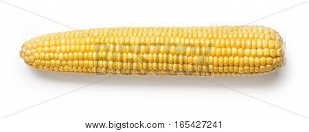 the Corn isolated on a white background