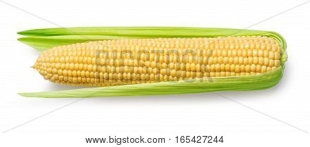 Ear of corn isolated on a white background. Fresh corncob. with clipping path