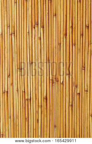 Dry reeds texture. Organic nature wallpaper of yellow cane. Natural warm wooden background with bamboo and straw