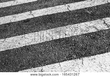 Zebra. Pedestrian Crossing Road Marking