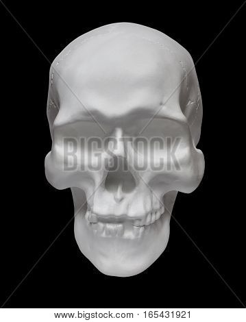 Human skull on black background. Anatomical model in plaster