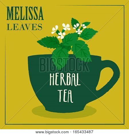 Herbal tea with Melissa leaves. The design of the label. Vector