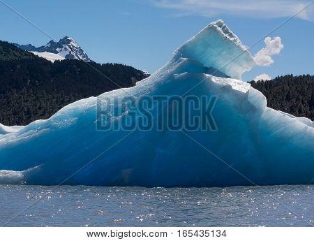 Iceberg melts slowly in the Alaskan summer sun on Spencer Lake Glacier.