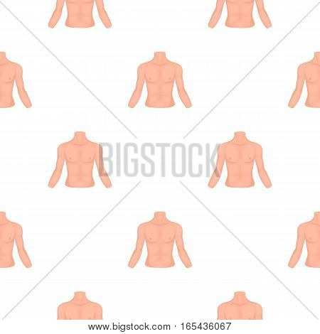 Chest icon in cartoon style isolated on white background. Part of body pattern vector illustration.
