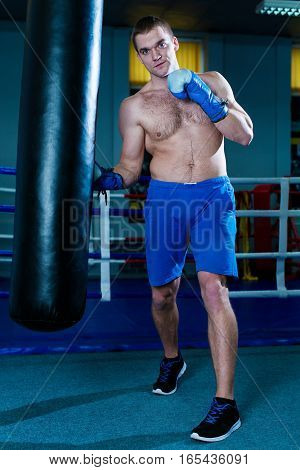 Handsome man in blue boxing gloves training on a punching bag in the gym. Male boxer doing workout