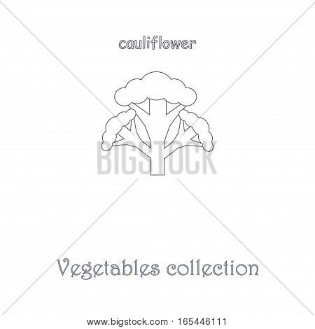 Line cauliflower icon, vegetables icon collection stock vector illustration
