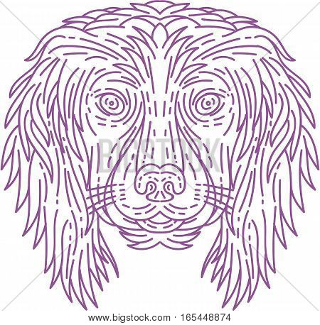 Mono line style illustration of a cocker spaniel dog head viewed from the front set on isolated white background.