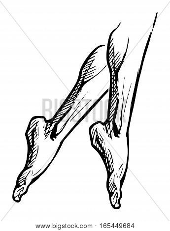 Vector illustration of female foot isolated on white background in ink hand drawn style. legs standing on tiptoes pointe.