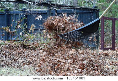 leaves in the air rake in motion