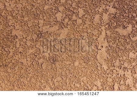 Texture Wall 8146