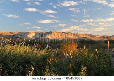 Beautiful Southwestern Landscape in Big Bend National Park, Texas
