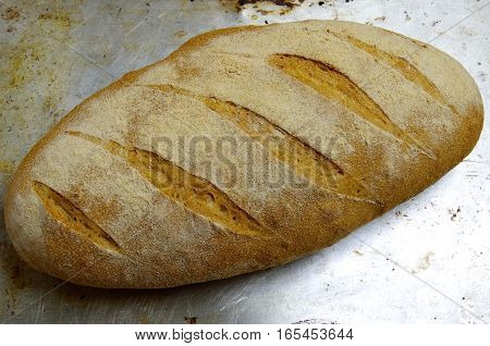 An oblong loaf of kamut bread with five diagonal slashes sits on a shiny metal baking sheet.