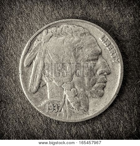 A macro shot of a 1937 Buffalo nickel.
