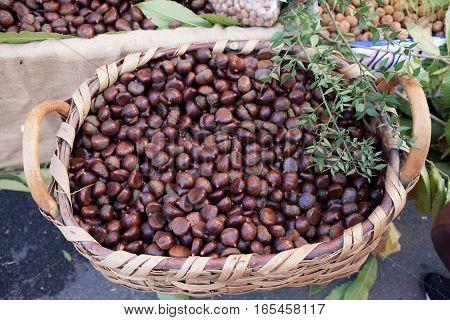 Chestnuts Basket