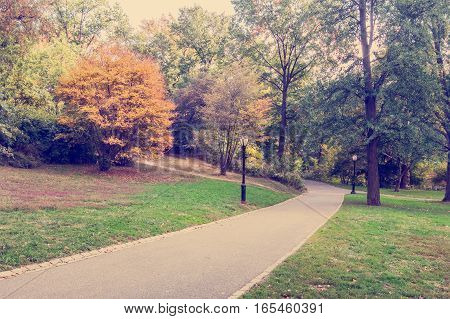 Central Park landscape stylized as an Instagram photo.