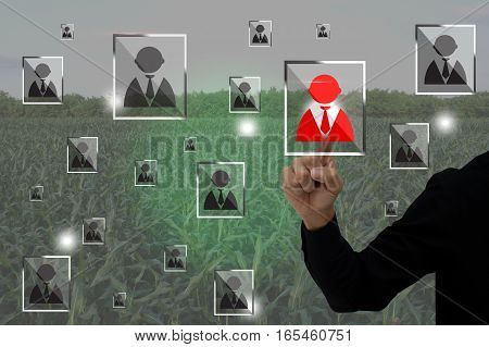 internet of things agriculture concept smart farming farmer use augmented reality application to manage a human resource in the farm
