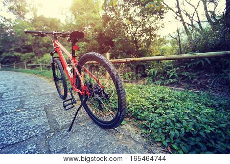 closeup of mountain bike on forest trail