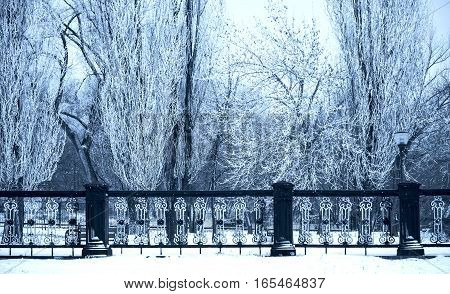 Winter landscape with snow, benches covered with snow among frosty winter trees behind metall wrought-iron fence. Black and white photo of lonely benche in a city park covered with snow. Sunset.