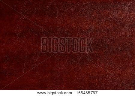 Pattern of brown plan leather background. Vintage brown skin