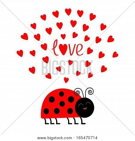 Red smiling lady bug insect with hearts. Cute cartoon character. Word Love Greeting card. Happy Valentines Day. White background. Flat design. Vector illustration