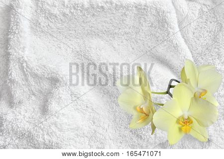 White Cotton Towel Terry Cloth Texture with Soft Folds and Yellow Orchid Flowers