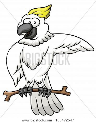 Cockatoo Perching on Tree Branch Cartoon Illustration Isolated on White Background