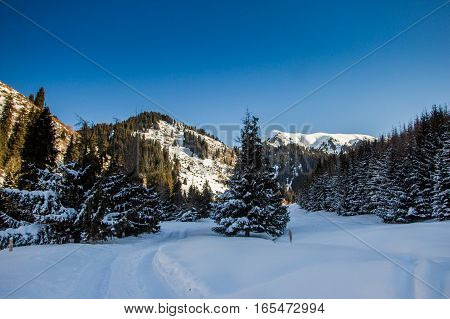 Mountain Winter Landscape In Kazakhstan Near Almaty City