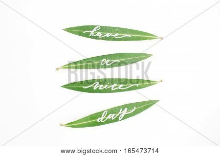 Calligraphic words