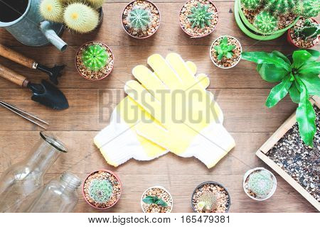 Garden tools with cactus in pot plant on wooden background with copy space