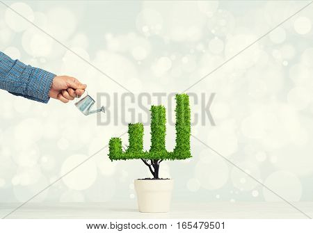 Hand of man watering small plant in pot shaped like growing graph