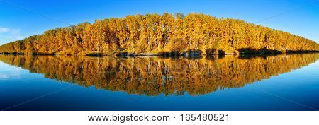autumn landscape of forest lake with reflections panorama