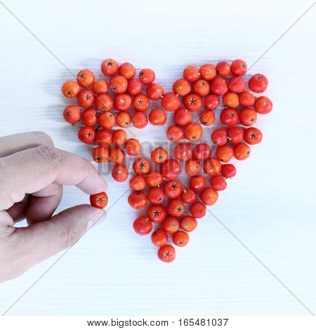 missing element for the heart symbol from red berries / Solution love puzzle