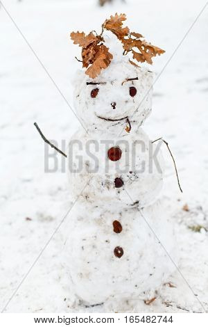 Picture of a funny snowman in the park