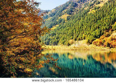 Beautiful Lake Among Colorful Fall Woods And Mountains